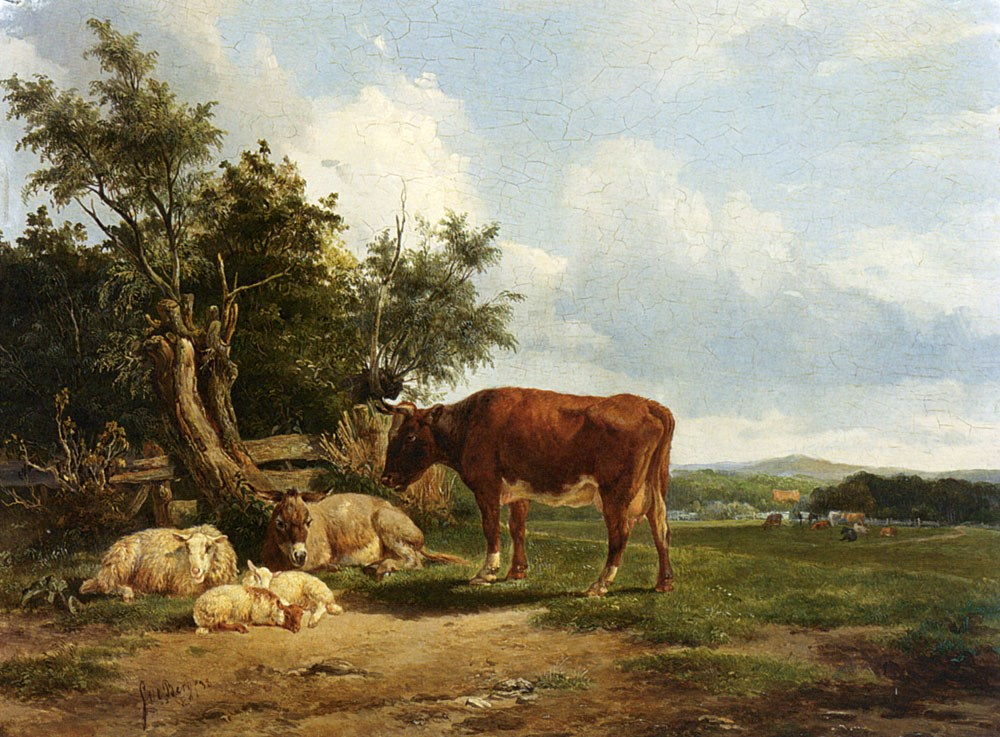 An Extensive Landscape With Cattle R