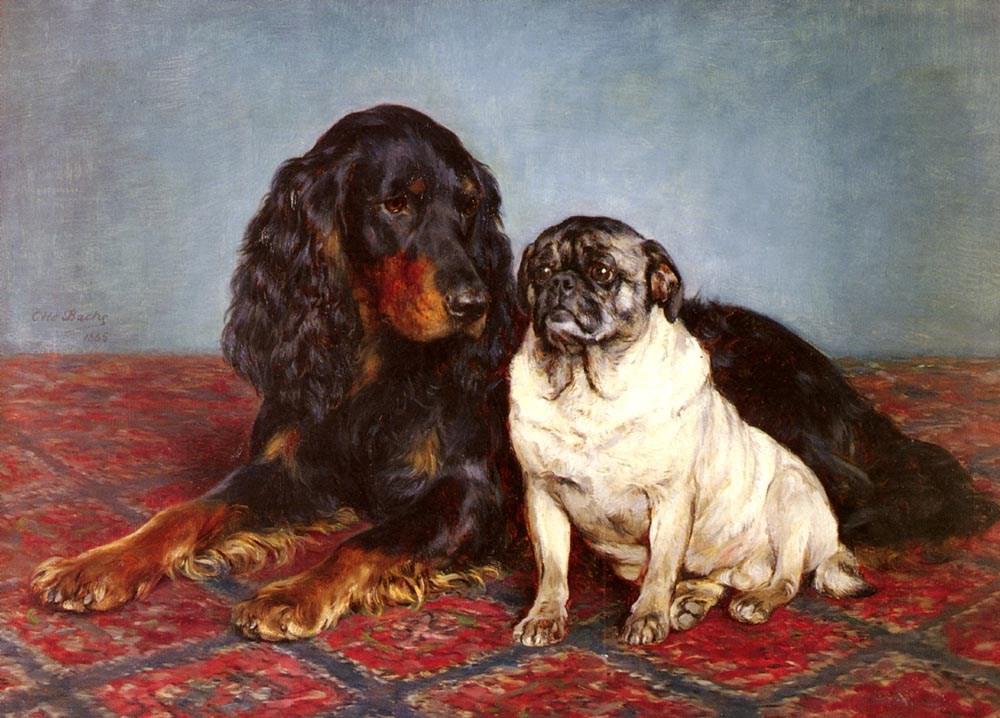 A Spaniel And A Pug
