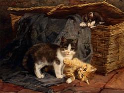 The Playful Kittens