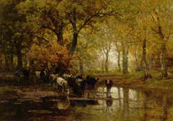 Watering Cows in a Pond