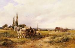 In The Mangel Field