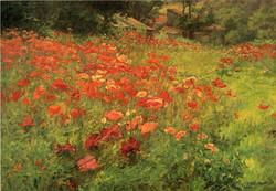 In Poppyland 1901