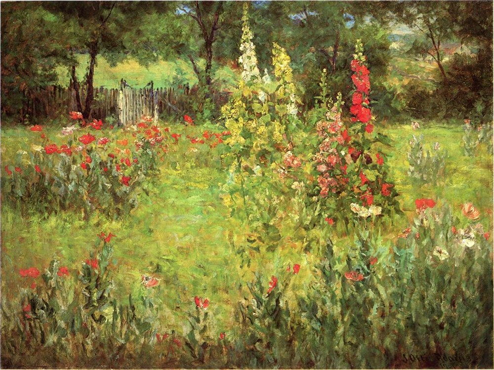Hollyhocks and Poppies  The Hermita