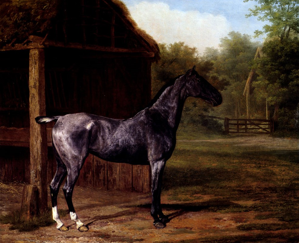 lord Rivers' Roan mare In A Landscap