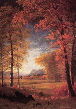 Autumn in America, Oneida County, Ne
