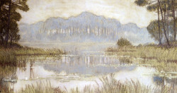 Landscape With Overgrown Pond