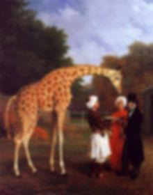 the_nubian_giraffe-large.jpg