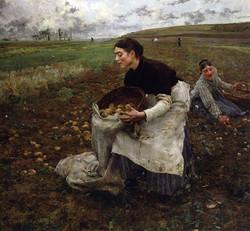 Saison d'Octobre: Recolte des pommes