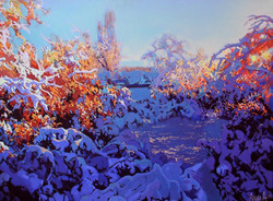 The Winter Shined with the Sun