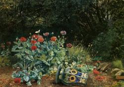 Summer Flowers in a Quiet Corner of