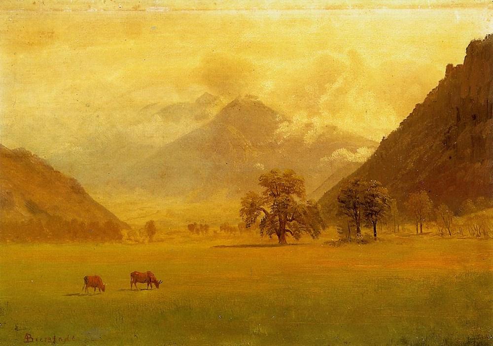 Rhone Valley