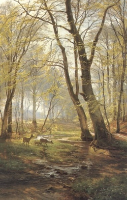 A Woodland Scene With Deer