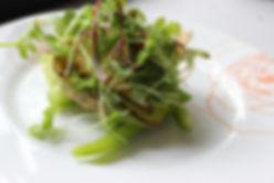 Mushroom Veggie  Burger with fried Egg a