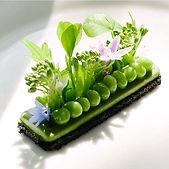 grape microgreen salad.jpg