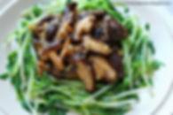 mushroom sprout1.JPG
