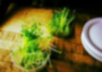 food-1846361.jpg