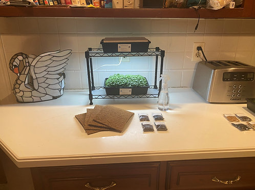 Microgreen Hydroponic Home Grow System