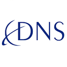 Dallas Network Services Logo