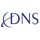 Dallas Network Services Logo