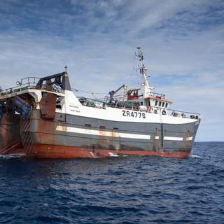 tuna supplier cape town