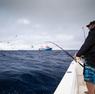 homepage fishing pic