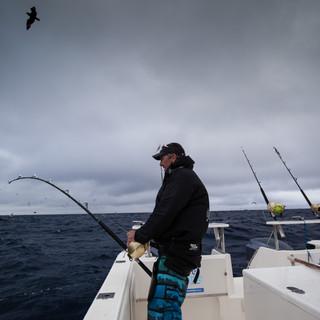 tuna charter 2