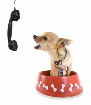 BarkBack! (Each Call)