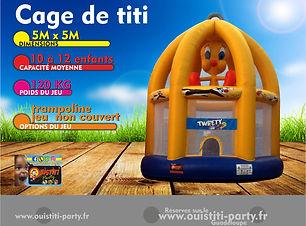 CAGE DE TITI.jpg