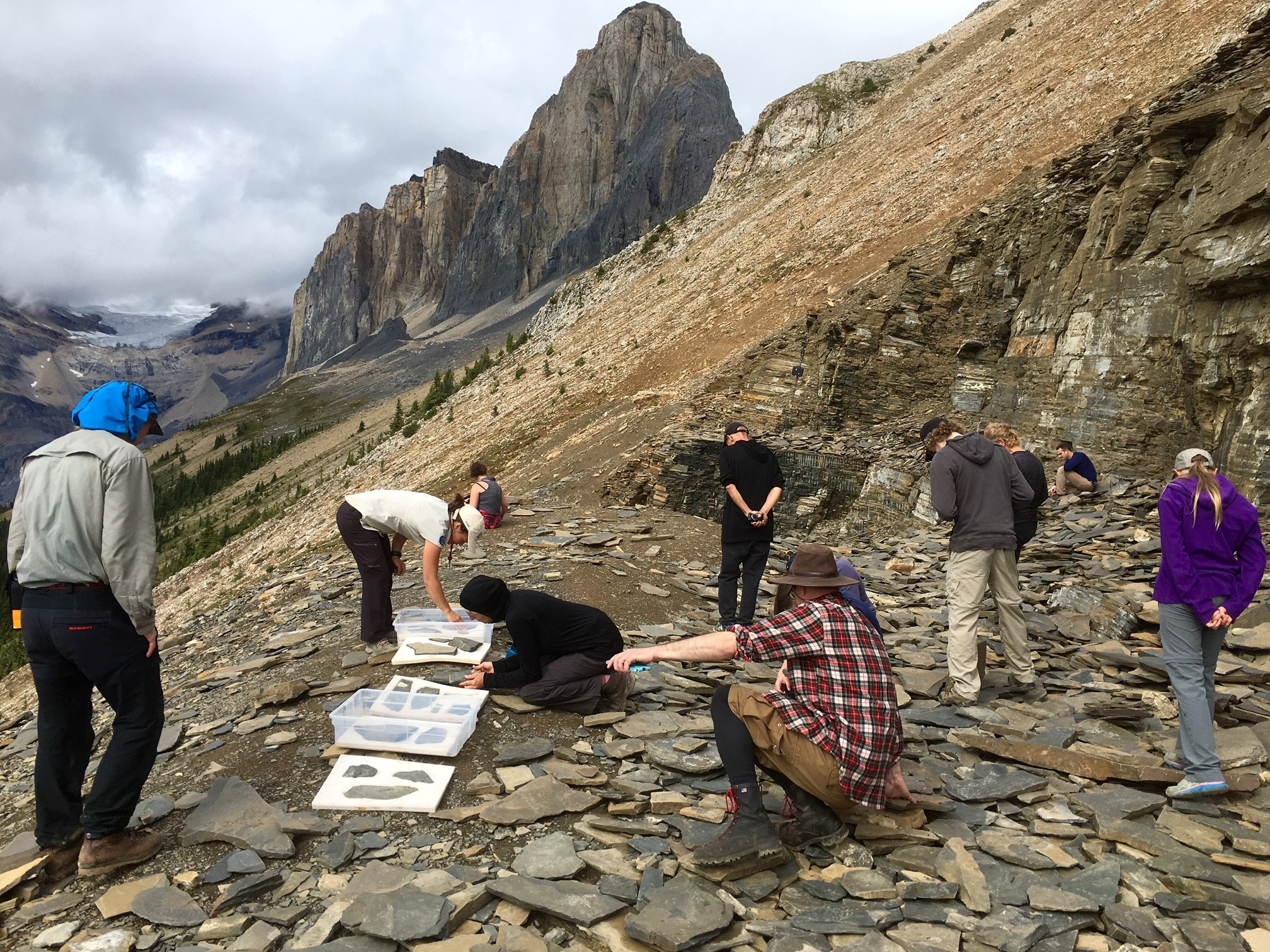 Burgess Shale hikers fossil hunting