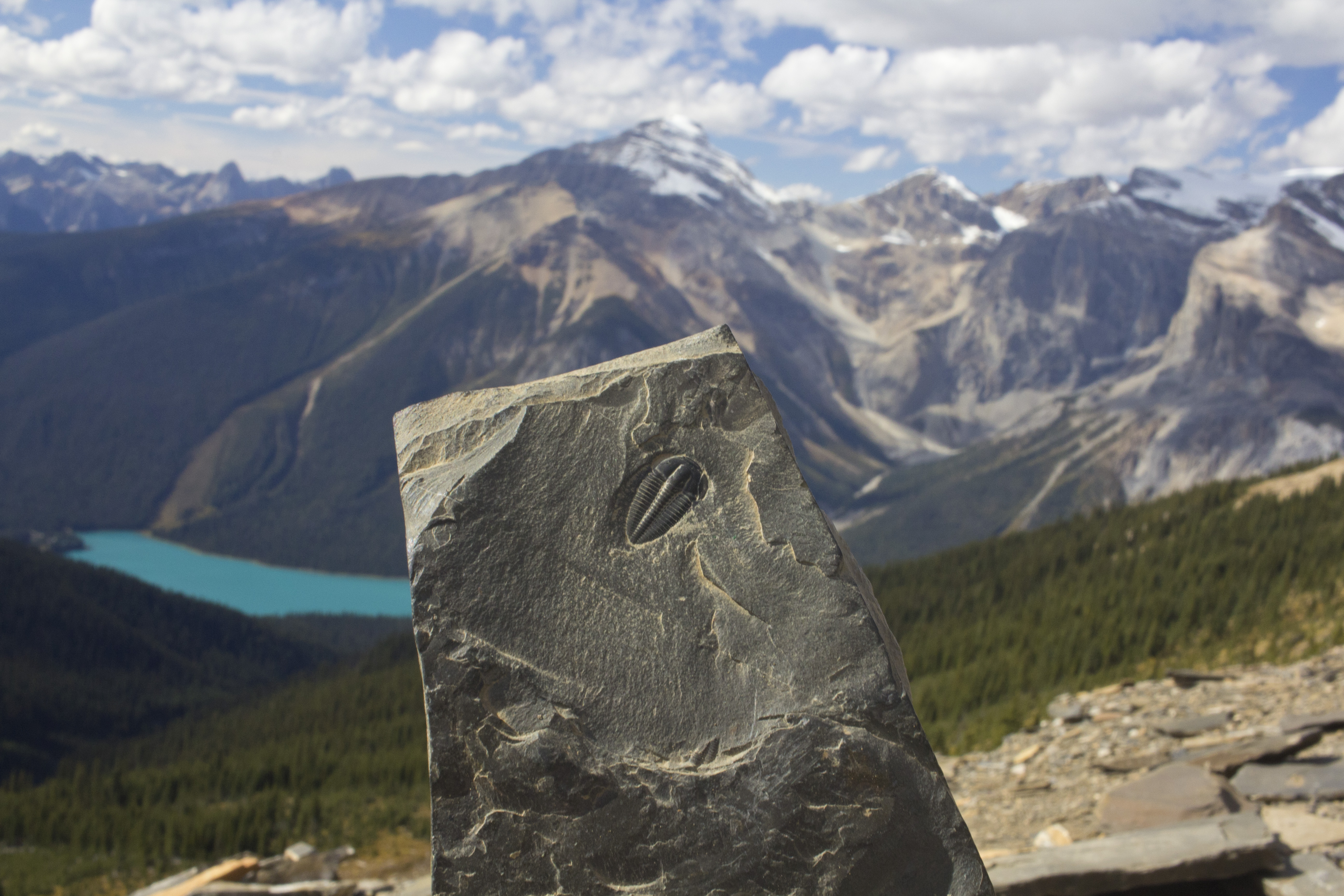 Burgess Shale fossil and lake
