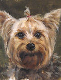 This will take you to see Craig Palmer's pet portraits