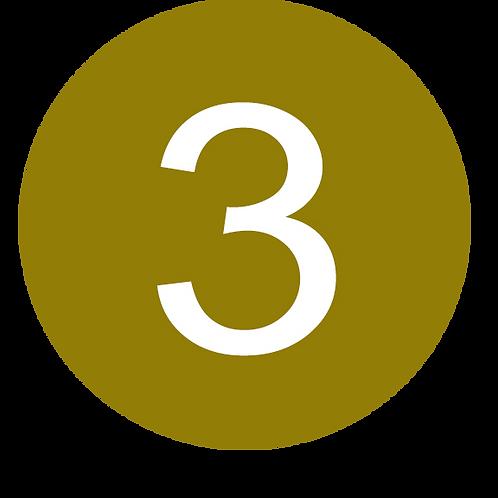 3 LARGE CIRCLE WHITE