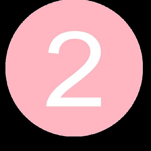 2 LARGE CIRCLE WHITE