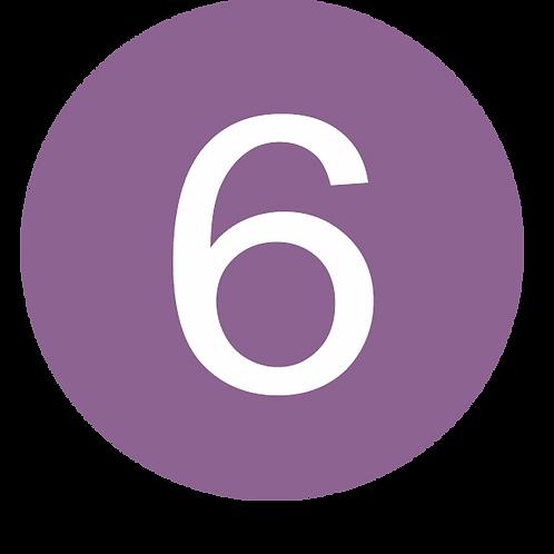 6 LARGE CIRCLE WHITE