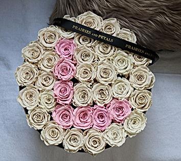 roses that last 1 year toronto