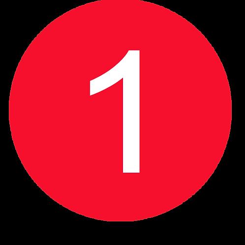 1 LARGE CIRCLE WHITE