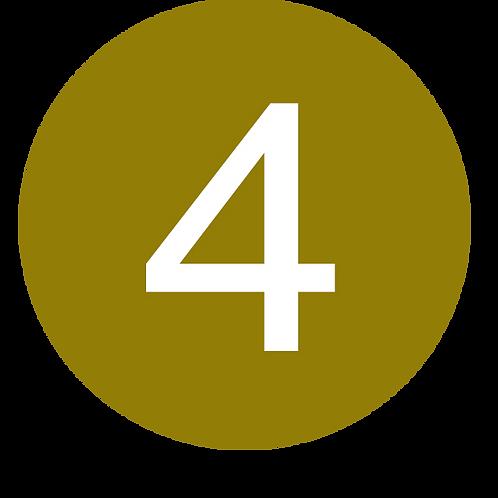 4 LARGE CIRCLE WHITE