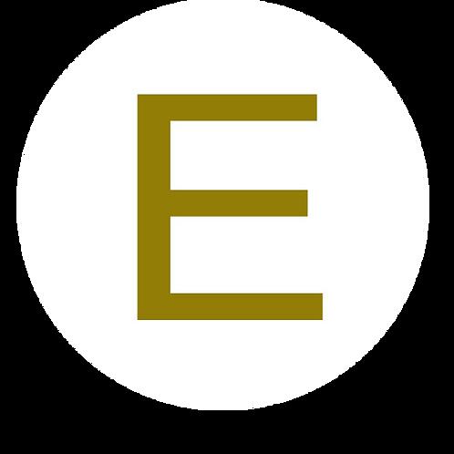 LETTER E GOLD LARGE CIRCLE