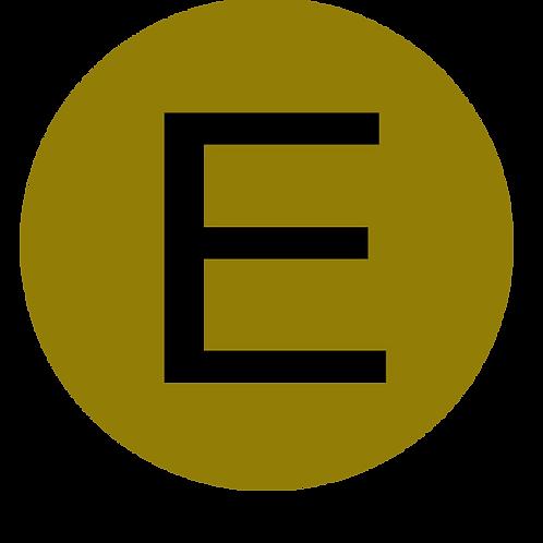 LETTER E BLACK LARGE CIRCLE
