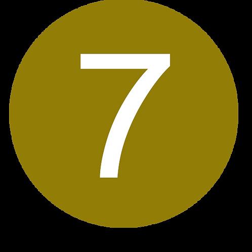 7 LARGE CIRCLE WHITE