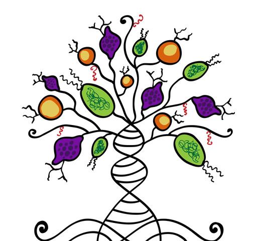pathogen tree of life