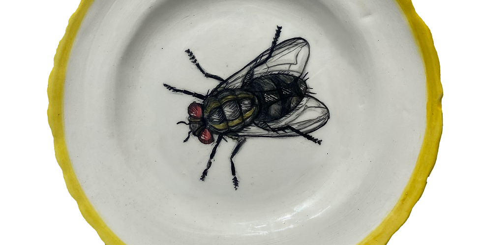 Hand Painted Side Plate - Fly
