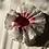 Thumbnail: Pink 'Queen Squish' - RSx Good Squish