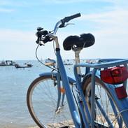 Vélo admire la vue