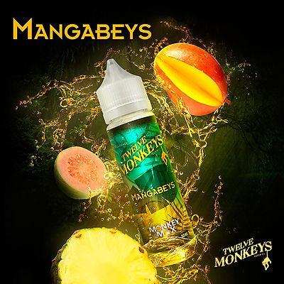 12 MONKEYS MANGABEYS