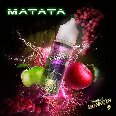 12 MONKEYS MATATA