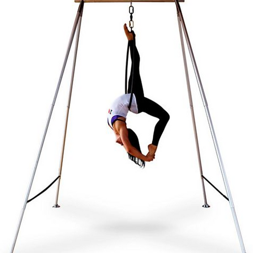 Aerial Swing Stand