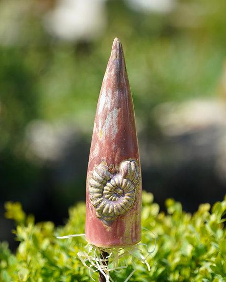 Zierspitze altrosa 'Ammonit'