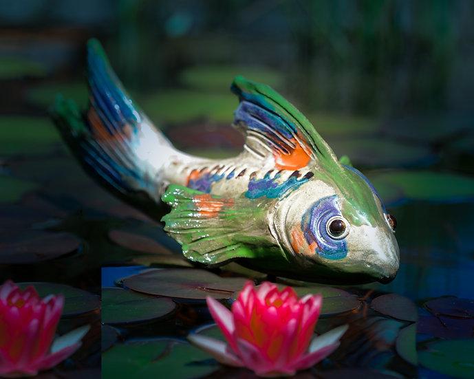 Fisch in Tricolore
