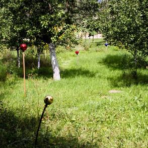 naturbelassener Obstgarten